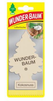 Wunderbaum Kokosnuss 24 Stück