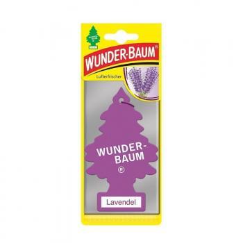 Wunderbaum Lavendel 24 Stück
